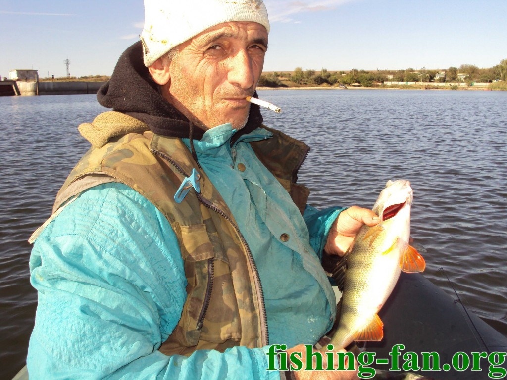 рыбалка сложное