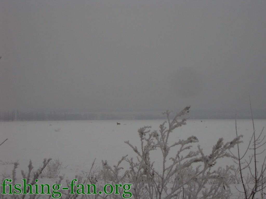 Зимняя рыбалка в Красногоровке