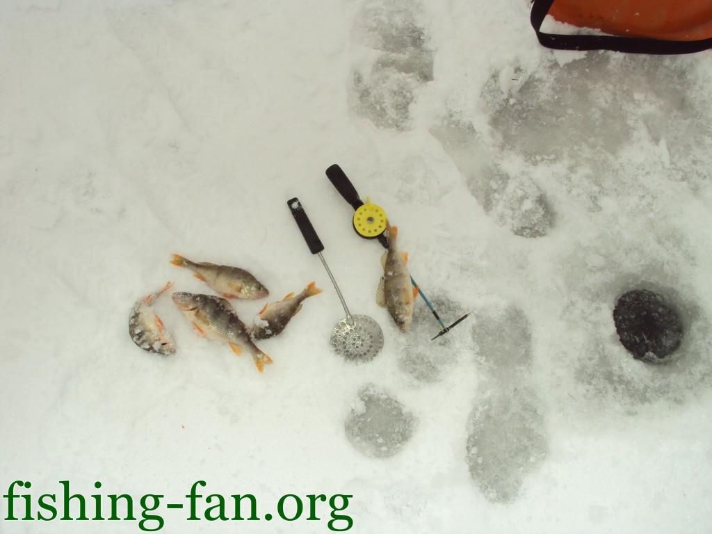 Рыбалка зимой в Украине на мотыля