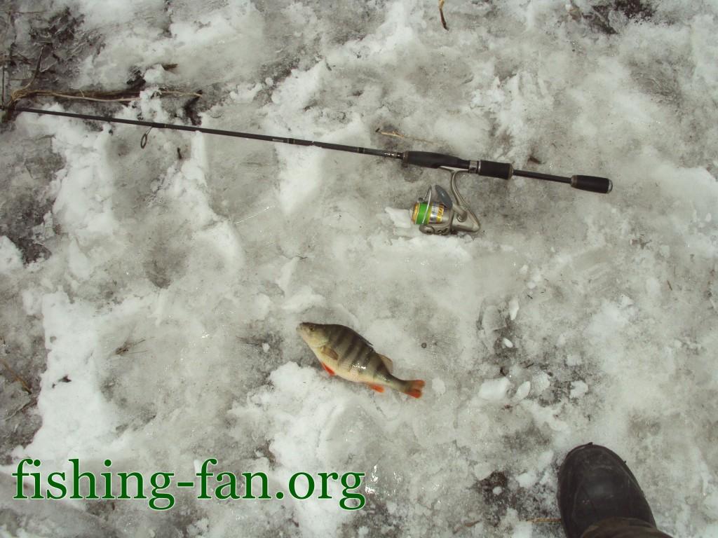 ловля на спиннинг весной
