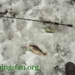 Дневник рыбака 11 03 2011. Весенняя рыбалка на спиннинг