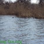 рыбалка весной в Украине