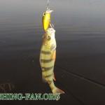 Дневник рыбака  24 04 2011 г. – Весенняя рыбалка на пасху.