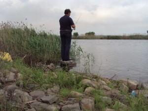 природа Донецкой области