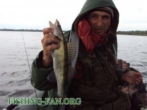 курахово погода для рыбака