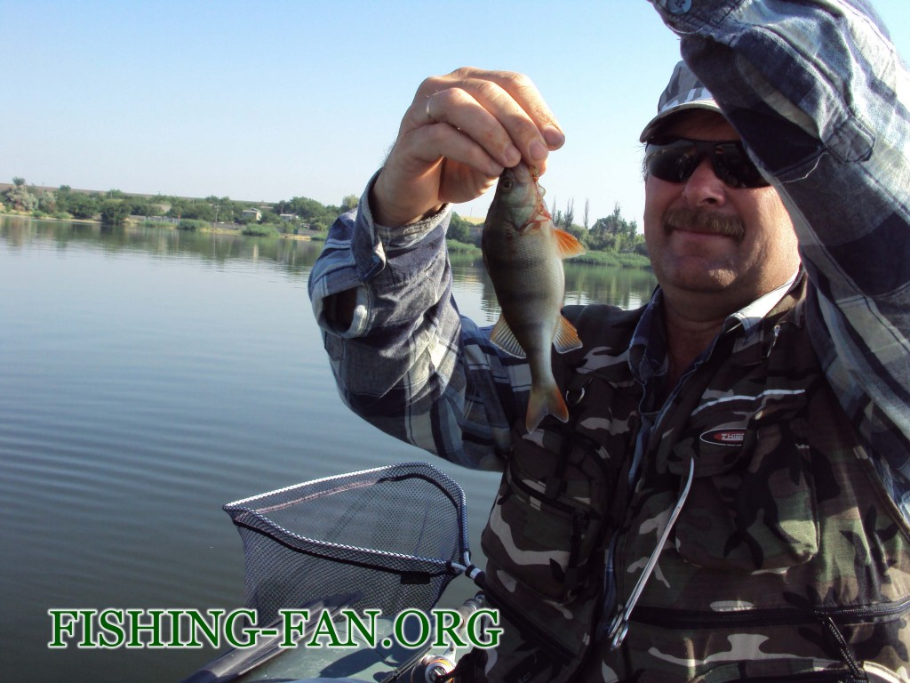 рыбалка летом на спиннинг на курахово