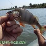 Дневник рыбака 22 07 11 г.  Долгожданная рыбалка летом с лодки на спиннинг.