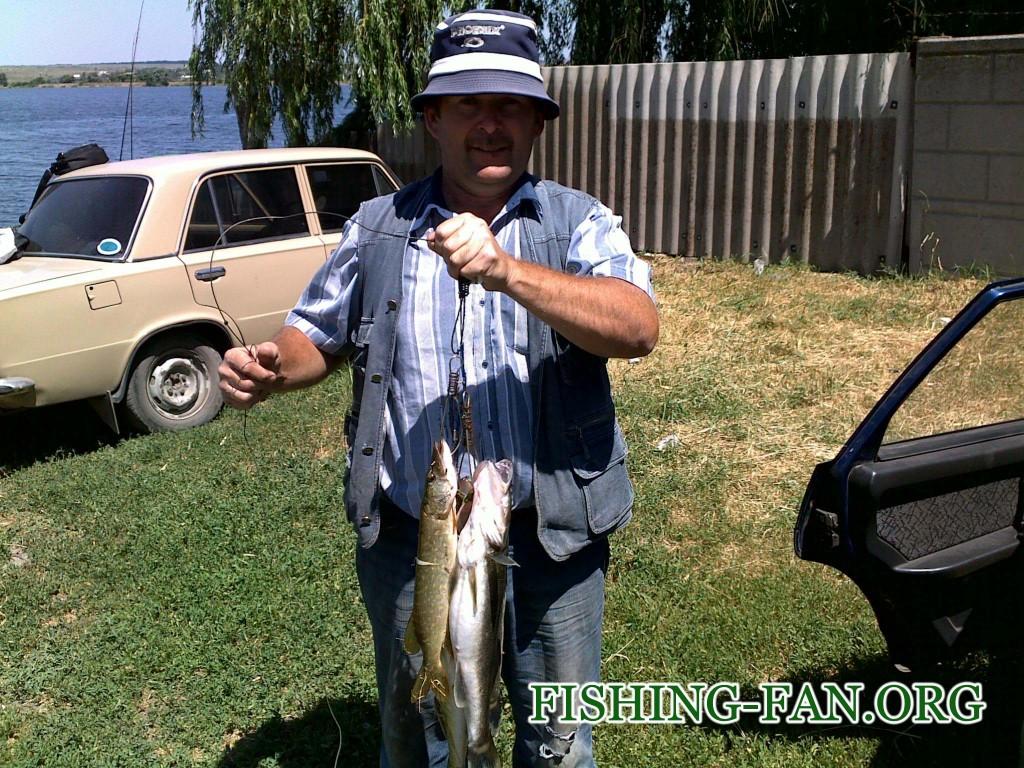 рыбалка на спиннинг в Донецкой области