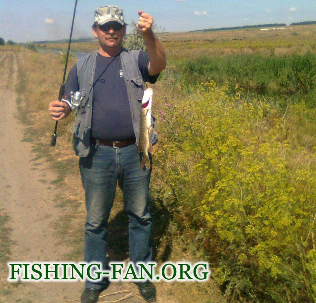 ловля щуки на спиннинг в Донецкой области