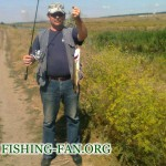 Дневник рыбака  6 08 2011г. Ловля щуки на р.Волчья в конце лета