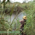 Дневник рыбака 11 09 2011. Обзор мест рыбной ловли осенью вдоль реки Сухие Ялы