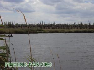 рыбалка осенью в с.Антоновка
