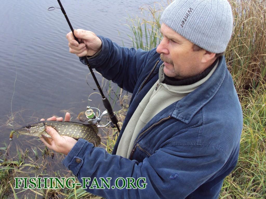 рыбалка осенью щука на реке мокрые ялы