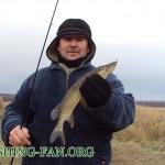 Дневник рыбака 12 11 2011. Рыбалка на спиннинг в морозную погоду. Щука в конце осеннего сезона рыбно...