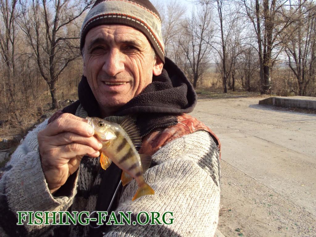 ловля окуня поздней осенью на спиннинг в Донецкой области