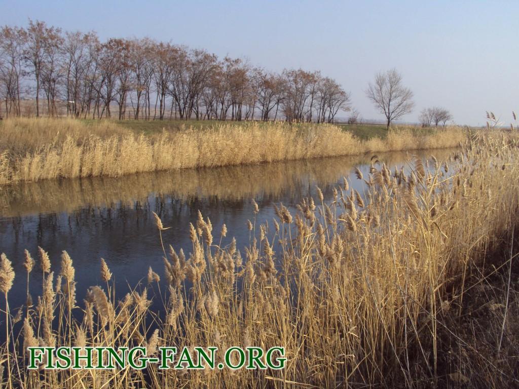 рыбалка поздней осенью на р.Волчья в Донецкой области
