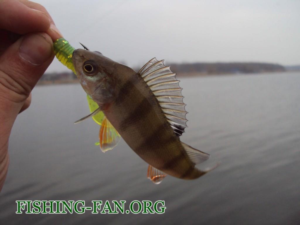 рыбалка на Курахово поздней осенью ловля на спиннинг