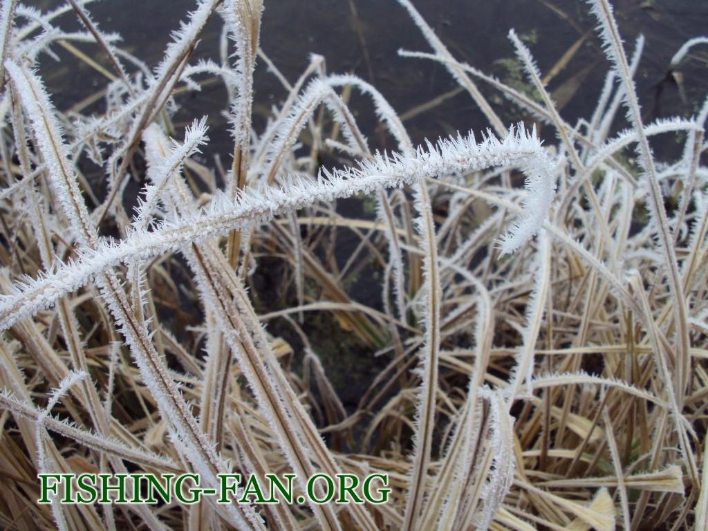 ловля на спиннинг в мороз в Донецкой области