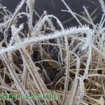 Дневник рыбака 29 12 11. рыбалка зимой на спиннинг в морозную погоду. Щука и окунь на речках Донецко...