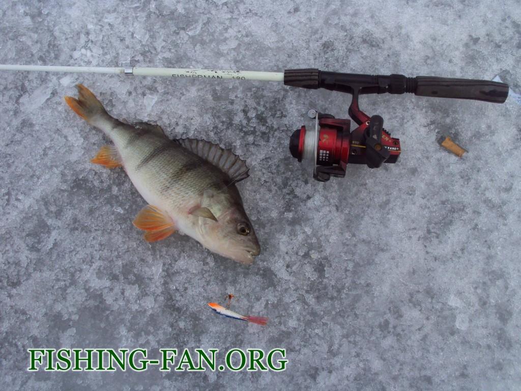Рыбалка весной в Донецкой области