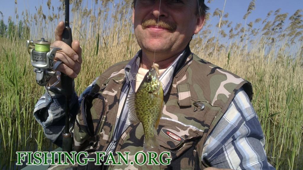 рыбалка весной на курахово ловля красноперки на спиннинг