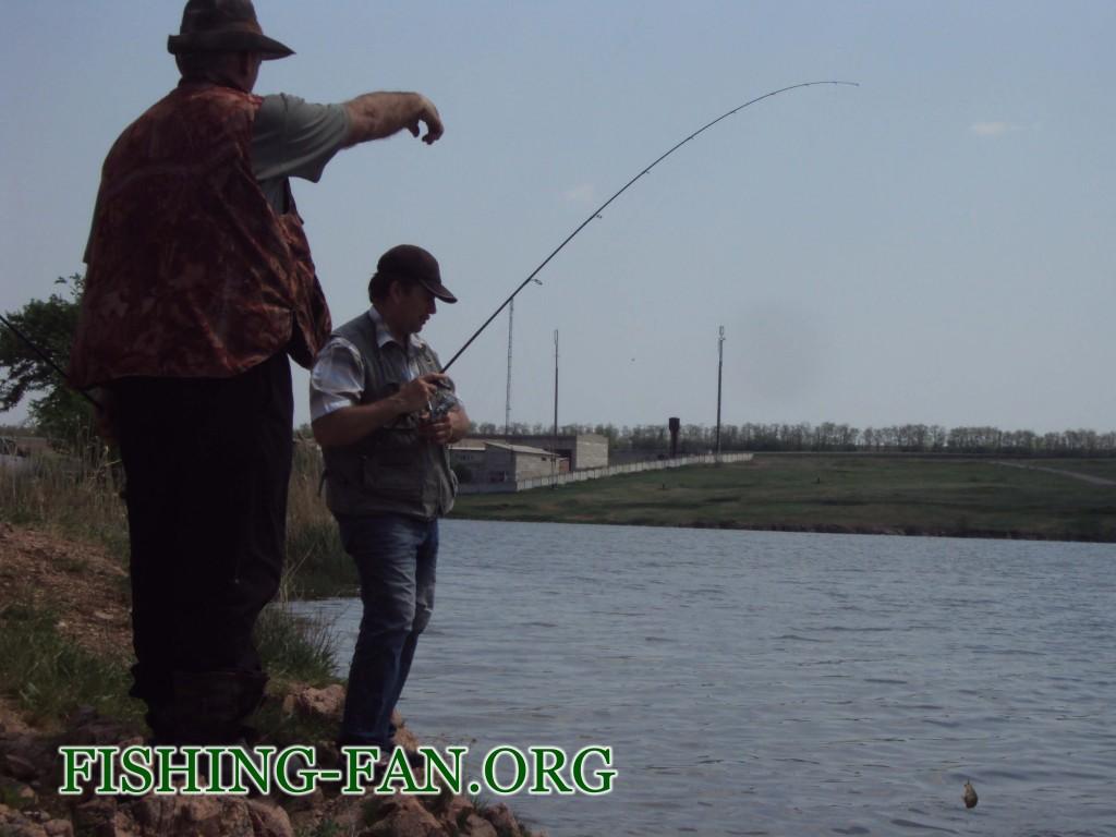 Ловля окуня спиннингом на Николаевском водохранилище.