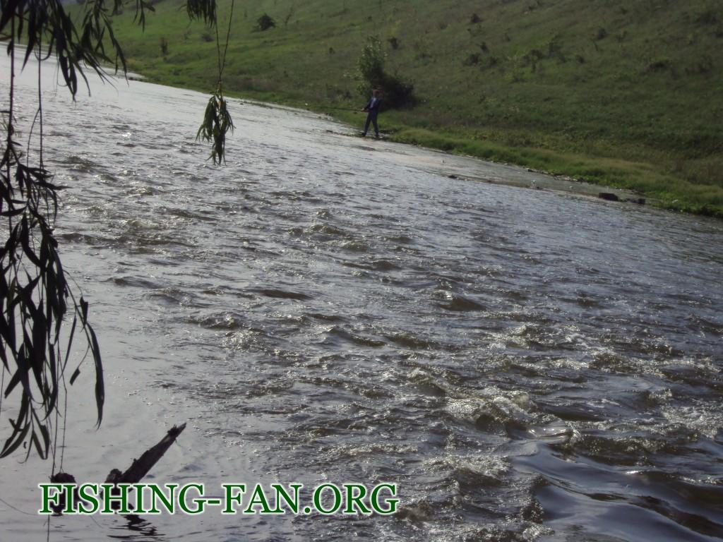 Ловля голавля в Донецкой области