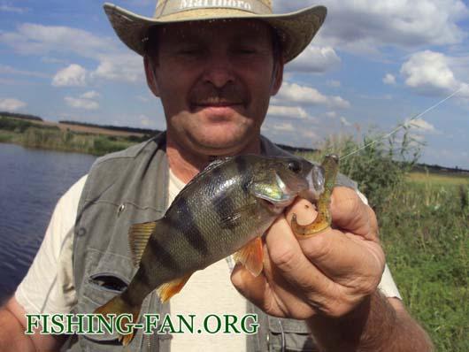 Ловля окуня спиннингом на реке Сухие Ялы