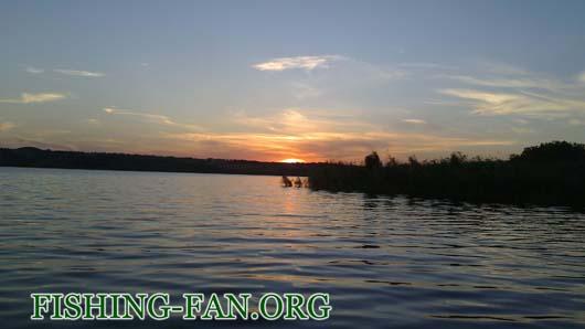 Ловля окуня спиннингом на водоемах донецкой области