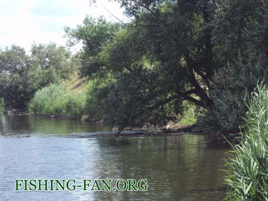 Ловля голавля спиннингом на реке Кальмиус