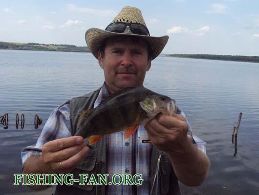 рыбалка летом в Донецкой области на спиннинг. крупный окунь