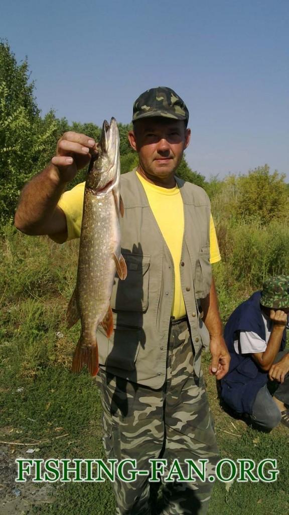 рыбалка на спиннинг в Донецкой области река Волчья
