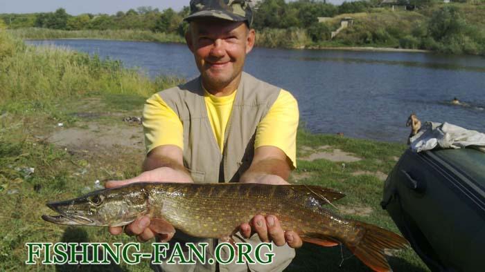 ловля щуки на спиннинг в конце лета в Донецкой области