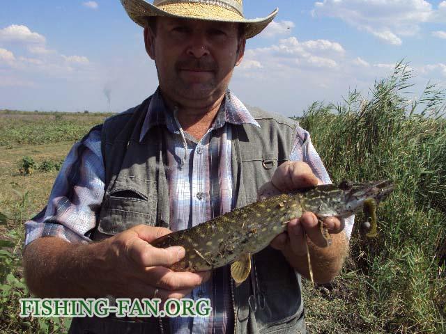 Ловля щуки спиннингом на реках Донецкой области