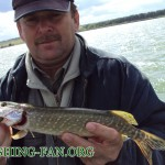 Дневник рыбака 8 09 12 г.     Ловля хищника в Донецкой области, Николаевское водохранилище.