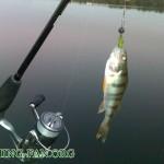 Дневник рыбака 27 09 12 г. Спонтанные выезды для ловли хищника на спиннинг в Донецкой области.