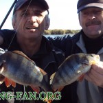 Дневник рыбака 21 10 12г. Ловля спиннингом с лодки крупного окуня на Курахово.