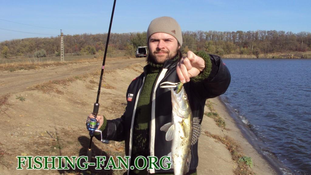Ловля судака осенью в Донецкой области