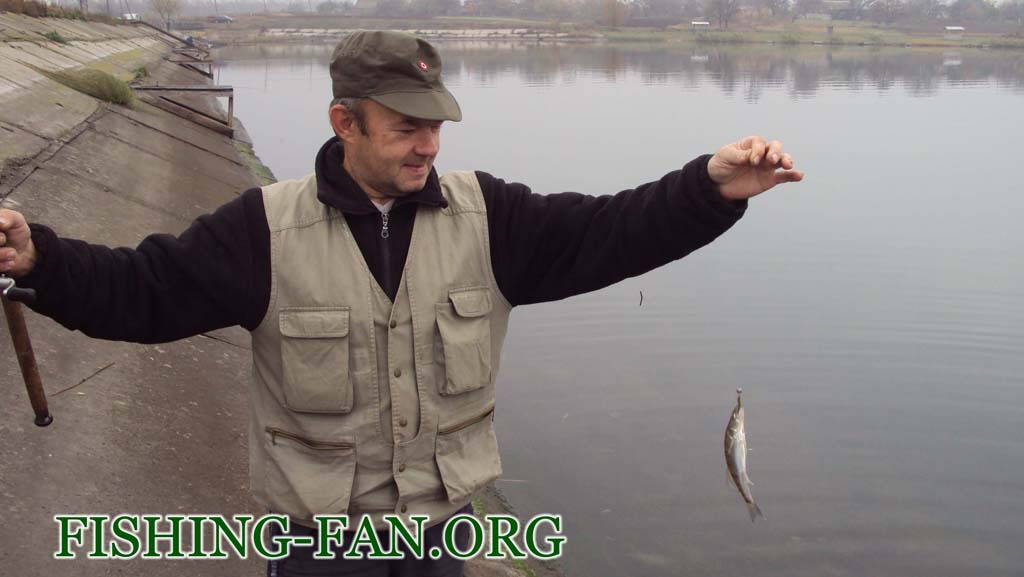 рыбалка осенью в Донецке и области. Судак на спиннинг.
