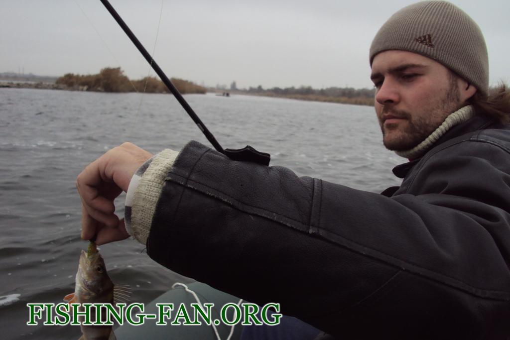 ловля окуня на спинннг поздней осенью на Курахово с лодок