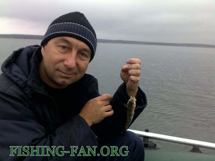 рыбалка в донецке на хищника