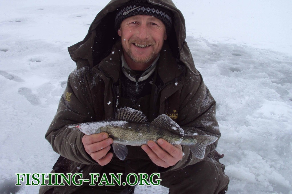 Ловля судака на балансир со льда на водоеме Георгиевский