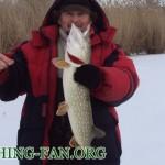 Дневник рыбака 16 01 13 г. Зимняя рыбалка. Ловля щуки на балансиры со льда на реке Сухие Ялы.