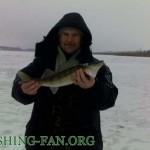 Дневник рыбака 02 02 2013 г. Ловля судака на балансиры со льда в феврале.