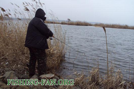 Ловля окуня на спиннинг в феврале на Курахово