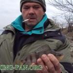 Дневник рыбака 02 03 13 г. В поисках хищника со спиннингом: Старобешевское водохранилище, река Кальм...