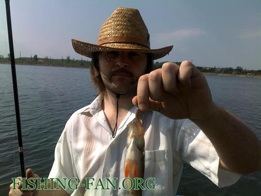 Ловля окуня на спиннинг на водоеме Горгиевский