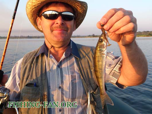 Ловля судака и окуня на спиннинг с лодок на Курахово
