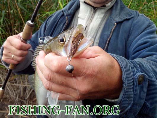 Ловля судака на водоемах Донецкой области в сентябре месяце на спиннинг.