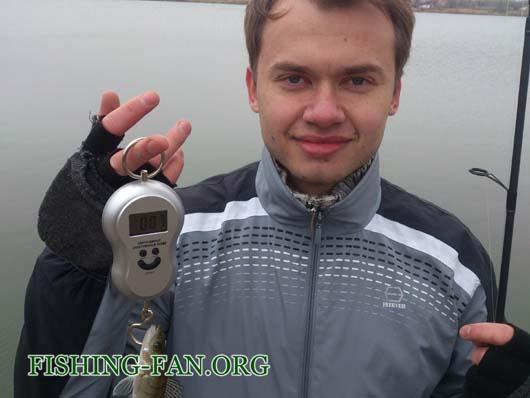 VІ фестиваль форума Красногоровских рыбаков по ловле на спиннинг с берега проходивший на водоеме Георгиевский 27 10 13